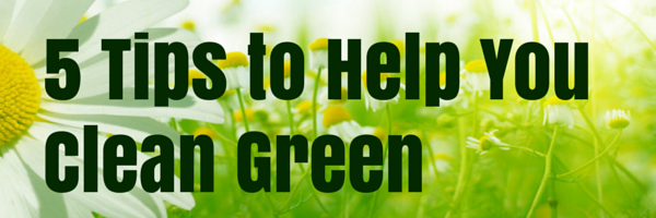 5 Tips To Clean Green